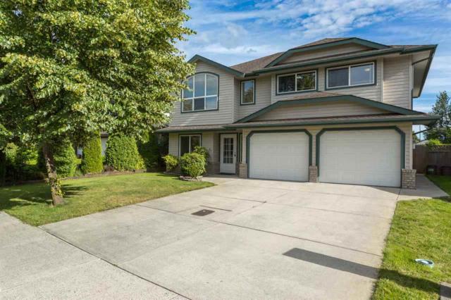 20118 121 Avenue, Maple Ridge, BC V2X 3K5 (#R2259373) :: West One Real Estate Team