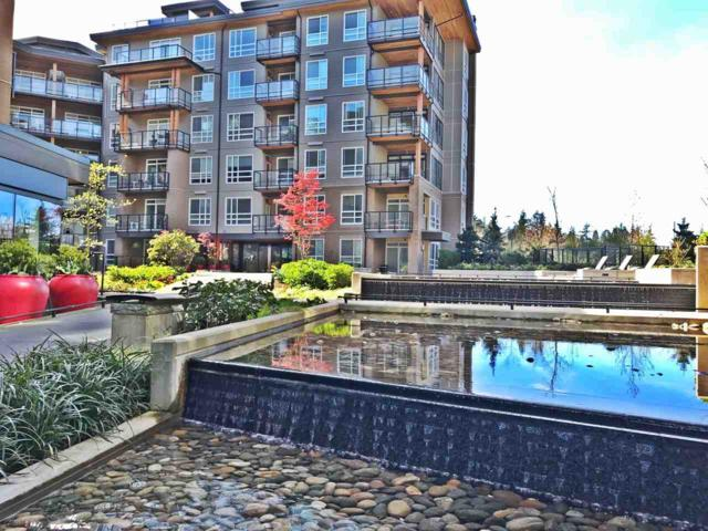 6033 Gray Avenue #113, Vancouver, BC V6S 0G3 (#R2259633) :: Re/Max Select Realty