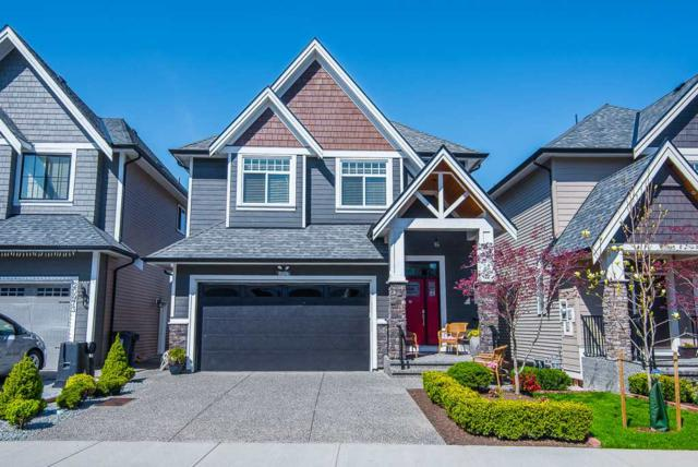 20979 80A Avenue, Langley, BC V2Y 0R3 (#R2260000) :: Homes Fraser Valley