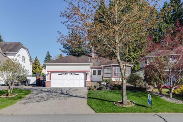 12366 South Park Crescent, Surrey, BC V3W 9X4 (#R2260221) :: Homes Fraser Valley