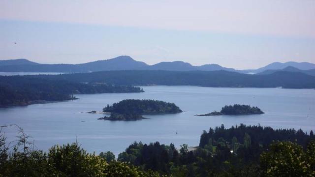 315 Cudmore Road, Salt Spring Island, BC V8K 2J5 (#R2261286) :: Vancouver House Finders