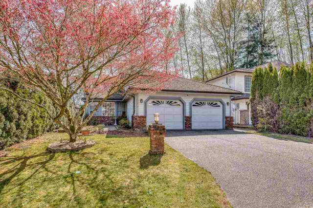 3102 Patullo Crescent, Coquitlam, BC V3E 2R2 (#R2261514) :: West One Real Estate Team