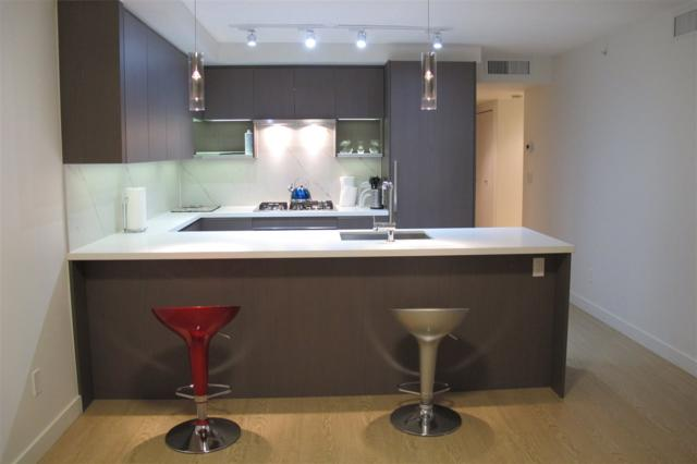 3131 Ketcheson Road #716, Richmond, BC V6X 0N4 (#R2261567) :: West One Real Estate Team