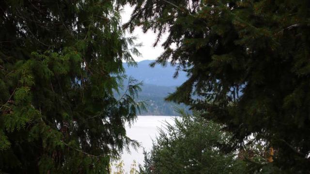 322 Collins Road, Salt Spring Island, BC V8K 2N1 (#R2263981) :: Vancouver House Finders