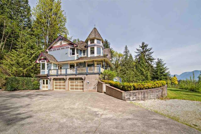 10675 Stave Lake Road, Mission, BC V2V 0B7 (#R2264409) :: TeamW Realty