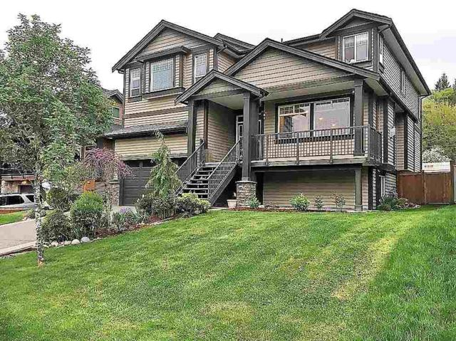 10860 249A Street, Maple Ridge, BC V2W 0E3 (#R2266957) :: Re/Max Select Realty
