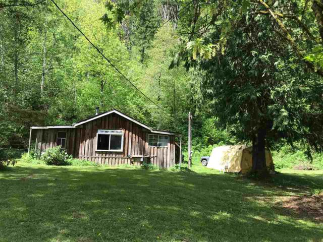 555 Iverson Road, Columbia Valley, BC V2R 4X5 (#R2267484) :: Re/Max Select Realty