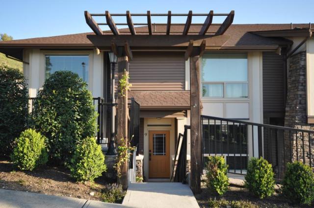 10550 248 Street #9, Maple Ridge, BC V2W 0H9 (#R2268461) :: Re/Max Select Realty