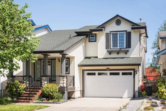 19865 Butternut Lane, Pitt Meadows, BC V3Y 2S7 (#R2268911) :: Vancouver House Finders