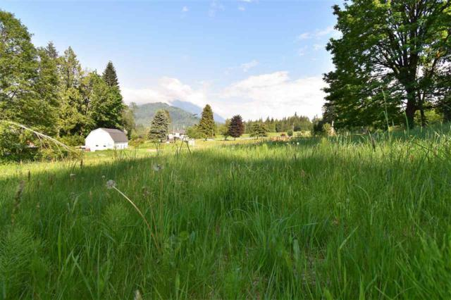 5673 Extrom Road, Chilliwack, BC V4Z 1H2 (#R2269035) :: Re/Max Select Realty