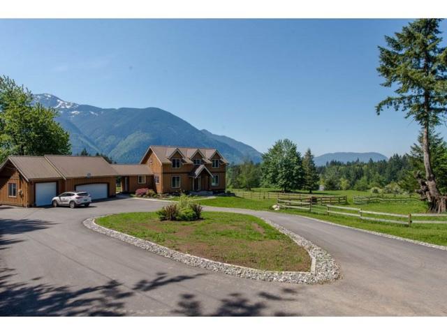 49710 Elk View Road, Sardis, BC V4Z 1G5 (#R2269596) :: Re/Max Select Realty