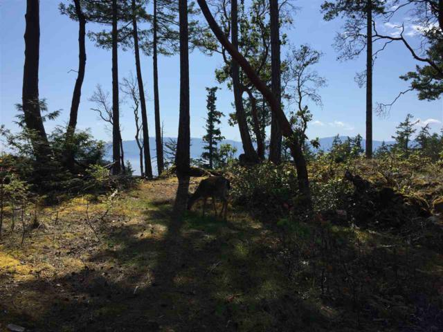 LOT 83 Johnston Heights Drive, Pender Harbour, BC V0N 1S0 (#R2269871) :: RE/MAX Oceanview Realty