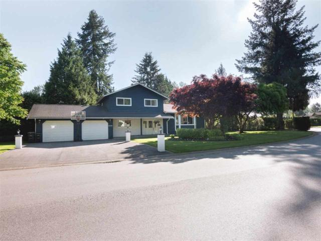 19749 N Wildwood Crescent, Pitt Meadows, BC V3Y 1M5 (#R2270470) :: Vancouver House Finders