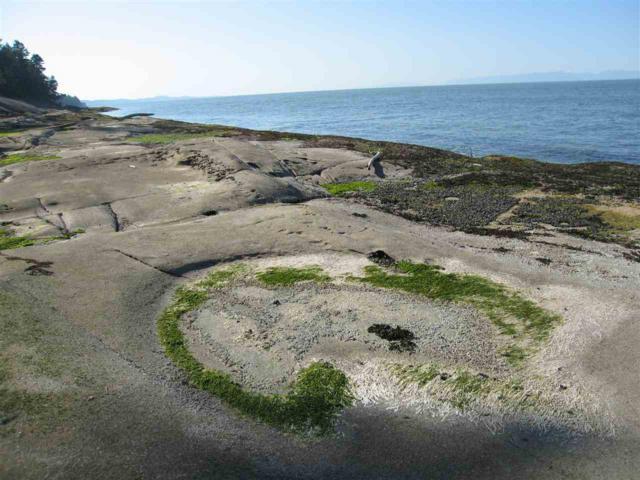 1724 W Sticks Allison Road, Galiano Island, BC V0N 1P0 (#R2270804) :: TeamW Realty