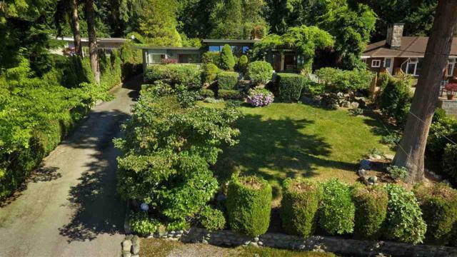 1585 Rena Crescent, West Vancouver, BC V7V 2Z2 (#R2271035) :: Vancouver House Finders