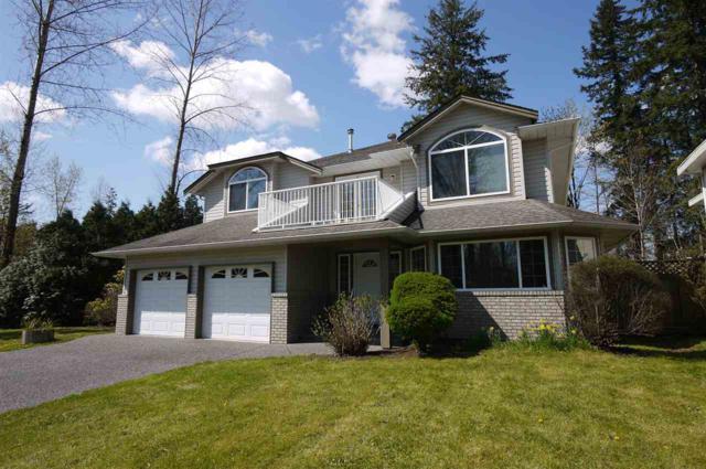 10105 170A Street, Surrey, BC V4N 4N6 (#R2271080) :: Vancouver House Finders