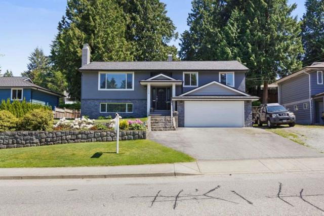 1638 Western Drive, Port Coquitlam, BC V3C 2X3 (#R2271163) :: Vancouver House Finders