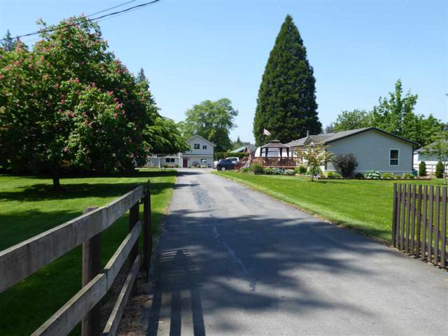 3717 224 Street, Langley, BC V2Z 2G7 (#R2271493) :: Vancouver House Finders