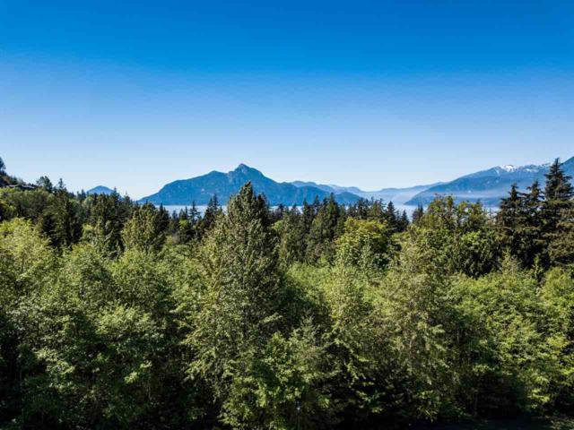 135 Country Club Road, West Vancouver, BC V0N 3Z2 (#R2271542) :: West One Real Estate Team