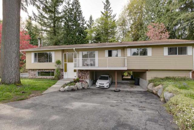 1971 Carson Court, Coquitlam, BC V3J 1W7 (#R2272419) :: Vancouver House Finders