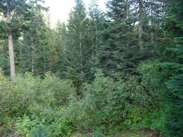 20689 Edelweiss Drive, Agassiz, BC V0M 1A1 (#R2273595) :: Re/Max Select Realty