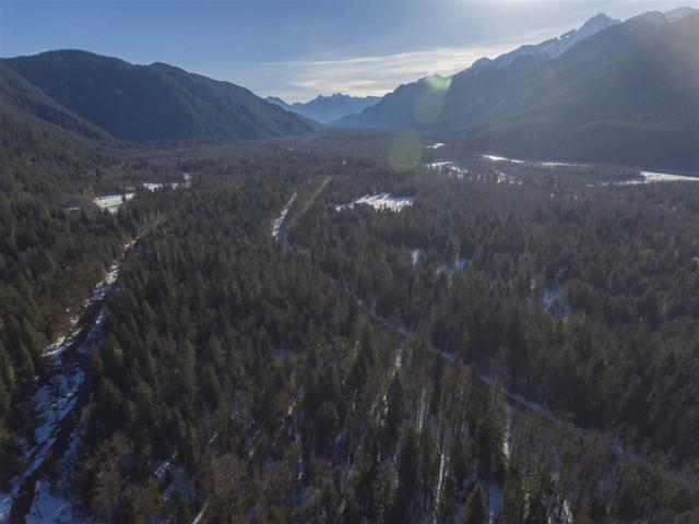 DL 1513 Squamish Valley Road Blk A, Squamish, BC V0N 1H0 (#R2278934) :: West One Real Estate Team