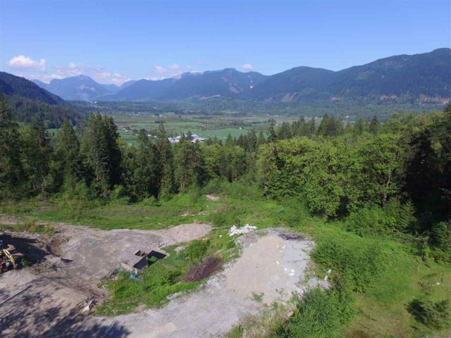 10394 Stave Lake Road, Mission, BC V2V 0B5 (#R2279125) :: TeamW Realty