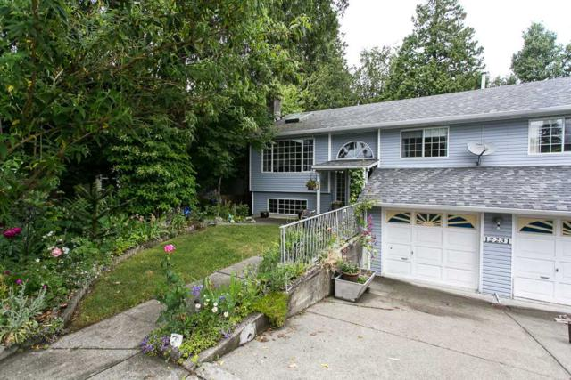 12231 100 Avenue, Surrey, BC V3V 2W9 (#R2279696) :: Re/Max Select Realty