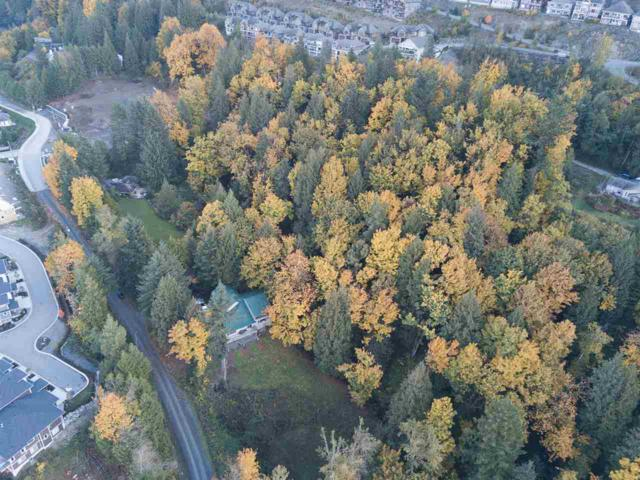 43590 Chilliwack Mountain Road, Chilliwack, BC V2R 4A1 (#R2280646) :: TeamW Realty