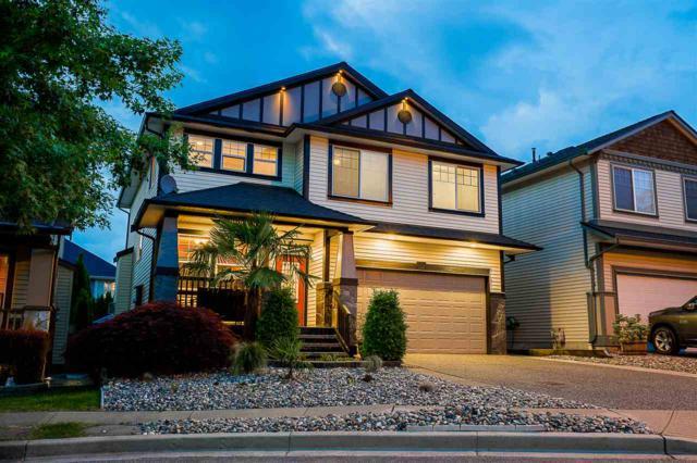 24133 Hill Avenue, Maple Ridge, BC V2W 2C9 (#R2281025) :: Re/Max Select Realty