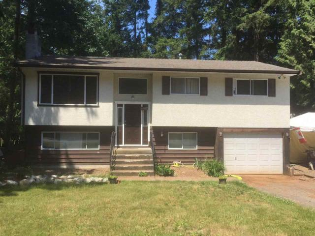 20435 36 Avenue, Langley, BC V3A 2R6 (#R2281635) :: Re/Max Select Realty