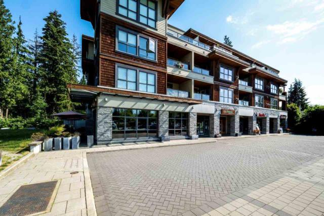 3732 Mt Seymour Parkway #308, North Vancouver, BC V7G 1C2 (#R2281900) :: TeamW Realty