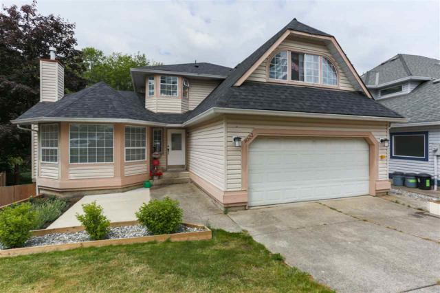 9023 203B Street, Langley, BC V1M 2C7 (#R2282004) :: Re/Max Select Realty