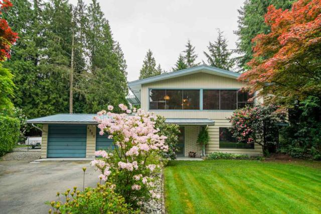 4950 202A Street, Langley, BC V3A 1T5 (#R2282558) :: Re/Max Select Realty