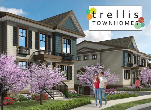 1818 Harbour Street #3, Port Coquitlam, BC V0V 0V0 (#R2282571) :: Re/Max Select Realty
