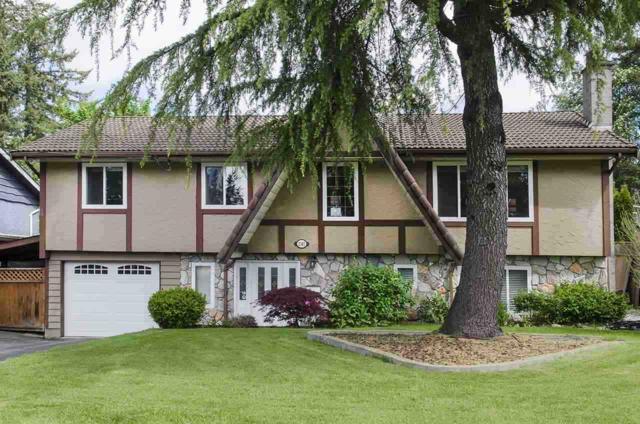 2387 Tolmie Avenue, Coquitlam, BC V3K 3E6 (#R2282586) :: Re/Max Select Realty