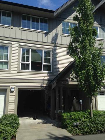 2501 161A Street #199, Surrey, BC V3Z 7Y6 (#R2282870) :: Re/Max Select Realty