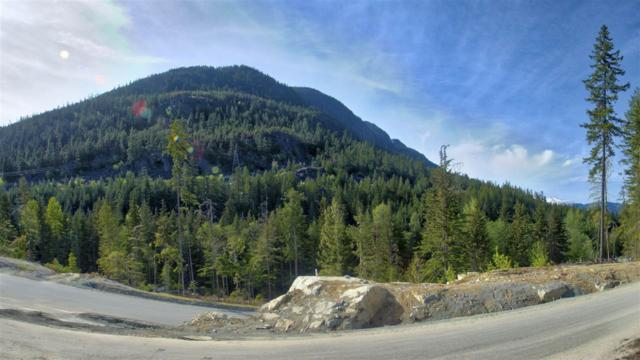9096 Corduroy Run Court, Whistler, BC V0N 1B9 (#R2283172) :: Vancouver House Finders