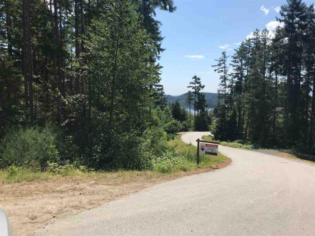 lot 119 Godkin Way, Pender Harbour, BC V0N 1S0 (#R2283407) :: RE/MAX Oceanview Realty