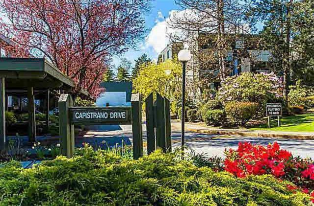 7329 Capistrano Drive, Burnaby, BC V5A 1P7 (#R2284092) :: West One Real Estate Team