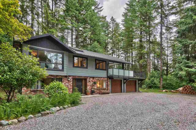 12334 Rolley Lake Street, Mission, BC V4S 1C8 (#R2284165) :: Vancouver House Finders