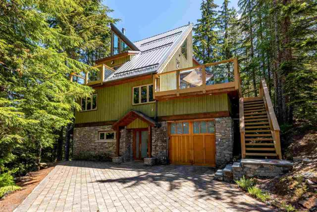2540 Tricouni Place, Whistler, BC V0N 1B2 (#R2285281) :: West One Real Estate Team