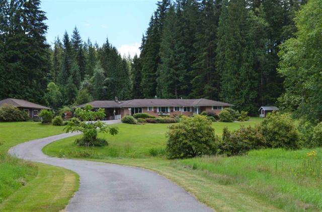 11740 272 Street, Maple Ridge, BC V2W 1Y9 (#R2285741) :: JO Homes | RE/MAX Blueprint Realty