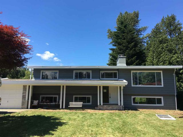 489 Naismith Avenue, Harrison Hot Springs, BC V0M 1K0 (#R2285942) :: West One Real Estate Team