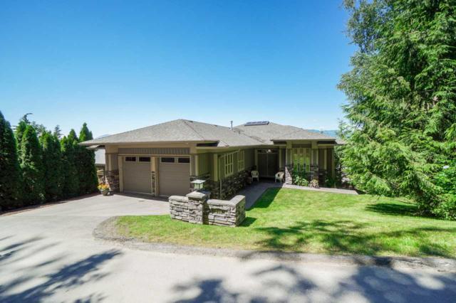 51075 Falls Court #244, Chilliwack, BC V4Z 1K7 (#R2287122) :: Vancouver House Finders