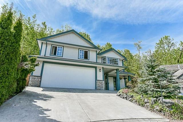 43995 Chilliwack Mountain Road #150, Chilliwack, BC V2R 4A1 (#R2288269) :: Vancouver House Finders