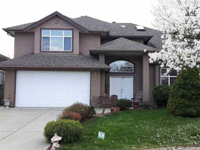 11007 237B Street, Maple Ridge, BC V2W 1E7 (#R2289289) :: Vancouver House Finders