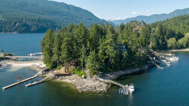 280 Turtlehead Road, Belcarra, BC V3H 4P2 (#R2289642) :: West One Real Estate Team