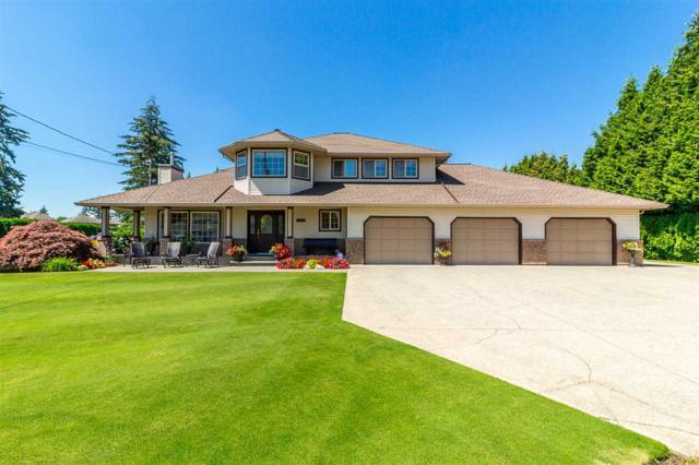 2915 Bergman Street, Abbotsford, BC V4X 1H3 (#R2290049) :: Homes Fraser Valley