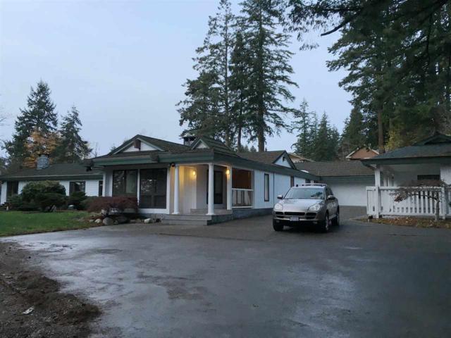 13439 56 Avenue, Surrey, BC V3X 2Z5 (#R2290108) :: Homes Fraser Valley